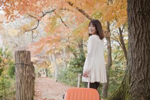 秋の紅葉した公園でトランク引っ張る女性の素材 [FYI01096595]