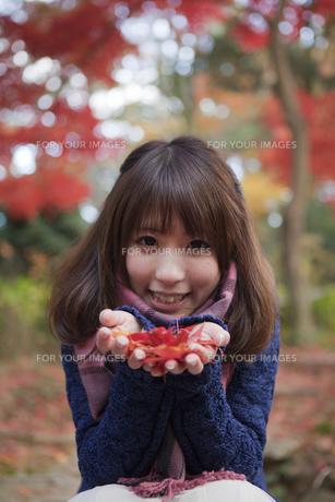 秋の紅葉の公園で落ち葉を手のひらに乗せる笑顔の女性の素材 [FYI01096601]