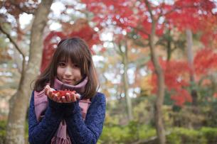 秋の紅葉の公園で落ち葉を手のひらに乗せる笑顔の女性の素材 [FYI01096632]