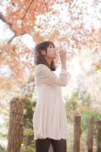 秋の紅葉した公園で立ってペットボトルの水を飲んでる女性の素材 [FYI01096679]