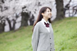 桜と女子高生の素材 [FYI01096765]