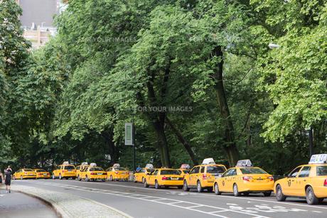 アメリカ ニューヨーク、朝のセントラルパークの素材 [FYI01107509]