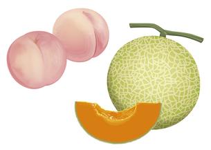 果物 桃 メロンの素材 [FYI01108914]