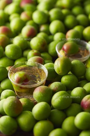 梅酒と梅の素材 [FYI01110424]