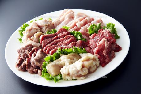 鶏、豚、牛、ホルモンその他焼肉セットの素材 [FYI01111498]