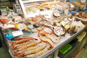 牧志公設市場の魚屋の素材 [FYI01114199]