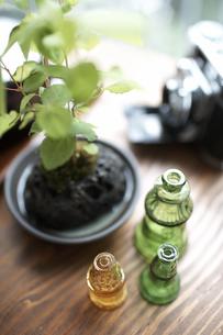 テーブルの上のグリーンと空き瓶の素材 [FYI01115029]