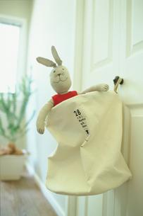 ウサギの人形の素材 [FYI01120939]