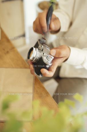 カメラを触る男性の素材 [FYI01121397]