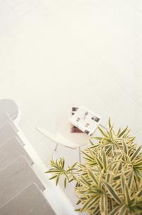 階段と植物の素材 [FYI01121637]