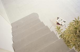 階段と植物の素材 [FYI01121763]