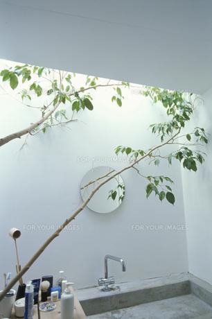 バスルームの素材 [FYI01122072]