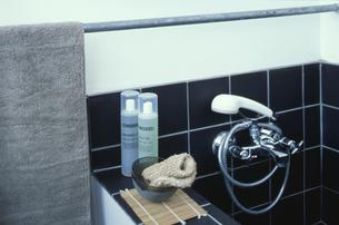 バスルームの素材 [FYI01122093]