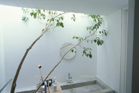 バスルームの素材 [FYI01122133]