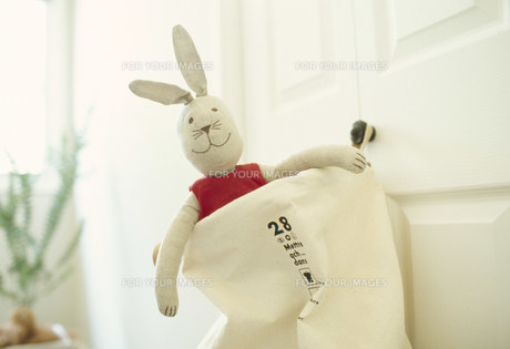 袋に入ったウサギの人形の素材 [FYI01122339]