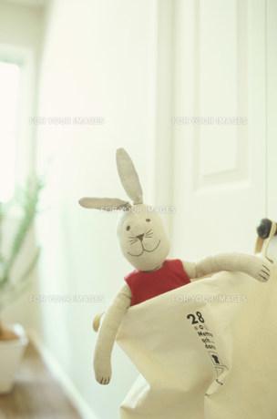 袋に入ったウサギの人形の素材 [FYI01122392]