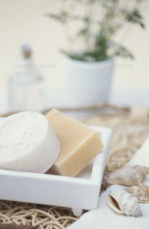 石鹸2種類と貝殻の素材 [FYI01122694]