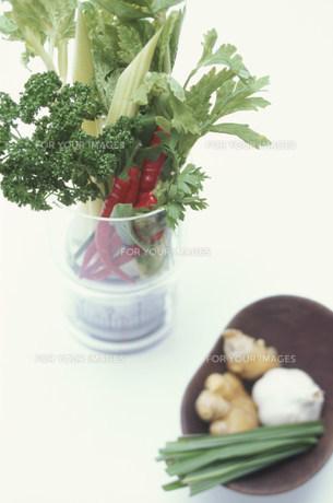 スケール(量り)にのせた野菜類と薬味の皿の素材 [FYI01126081]