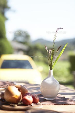 ガーデンテーブルの上の花と野菜の素材 [FYI01126299]