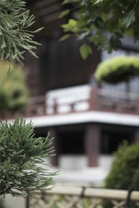 寺の庭の素材 [FYI01128424]