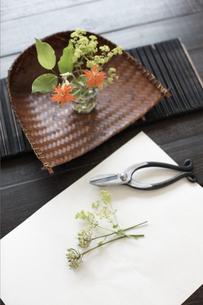 剪定ばさみと花の素材 [FYI01128621]