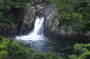 6月初夏,屋久島のトローキの滝の素材 [FYI01130837]