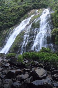 6月初夏,屋久島の大川(おおこ)の滝の素材 [FYI01130961]