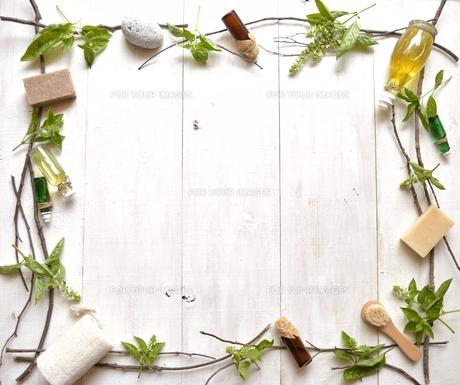 バジルリーフとアロマテラピー用品 フレーム 白木材背景の写真素材 [FYI01132153]