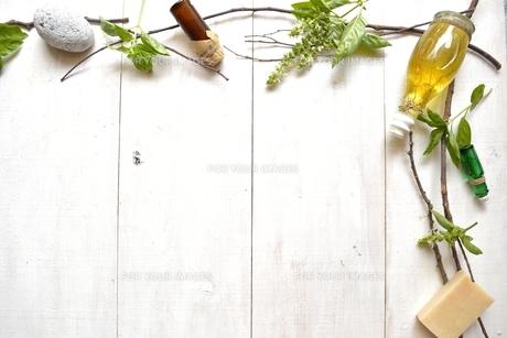 バジルリーフとアロマテラピー用品 フレーム 白木材背景の写真素材 [FYI01132154]