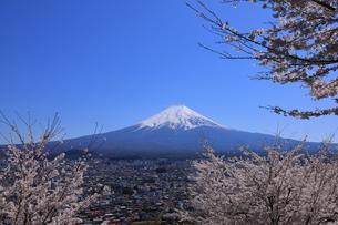 富士山の写真素材 [FYI01132163]