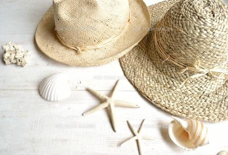 男女ペアの麦わら帽子と貝がら 白木材背景の写真素材 [FYI01132167]