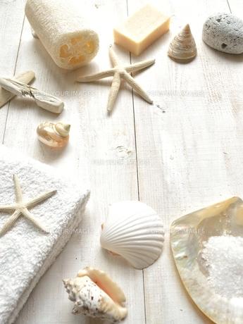貝殻とバスグッズ 白木材背景の写真素材 [FYI01132171]