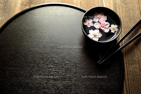 小鉢にいけた桜と黒いおぼんと箸の写真素材 [FYI01132223]