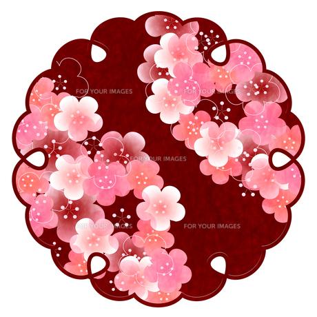 梅のイラスト素材 [FYI01132273]