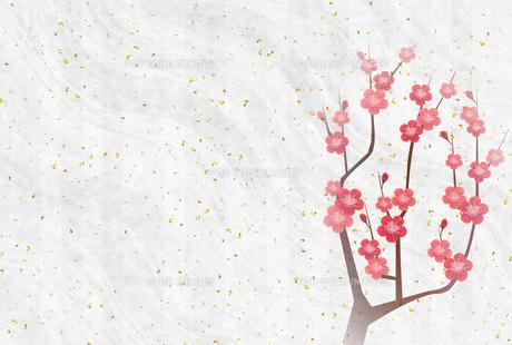 梅のイラスト素材 [FYI01132278]
