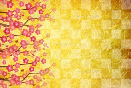 梅のイラスト素材 [FYI01132280]