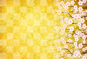 梅のイラスト素材 [FYI01132282]