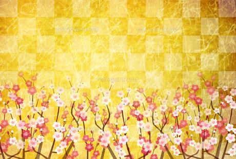 梅のイラスト素材 [FYI01132283]
