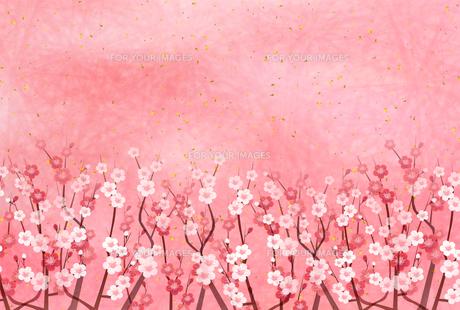 梅のイラスト素材 [FYI01132285]