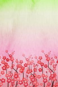 梅のイラスト素材 [FYI01132286]