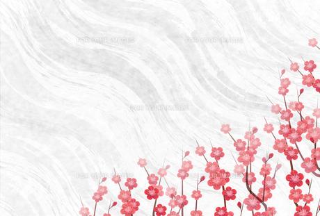 梅のイラスト素材 [FYI01132291]