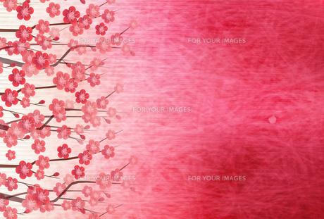 梅のイラスト素材 [FYI01132292]