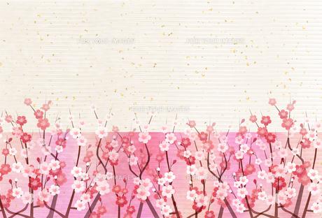 梅のイラスト素材 [FYI01132293]