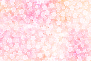 梅のイラスト素材 [FYI01132295]
