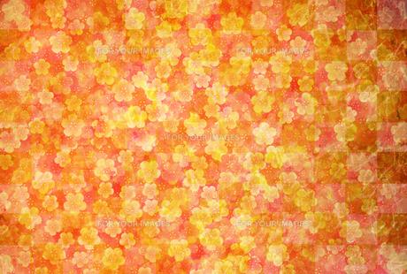 梅のイラスト素材 [FYI01132296]