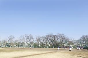 羽根木公園の素材 [FYI01132972]