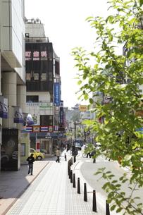 千日通り商店街の素材 [FYI01133362]