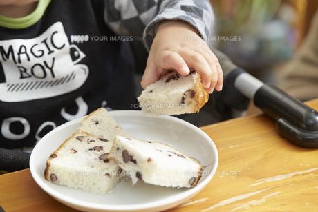 パンを手で持つ男の子の素材 [FYI01137066]