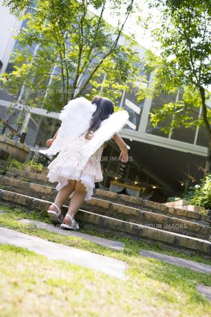 背中に羽をつけた女の子の後姿の素材 [FYI01137792]