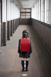 ランドセルを背負って廊下に立つ小学生の後姿の素材 [FYI01140795]